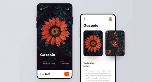Flowers mobile shop concept for Figma